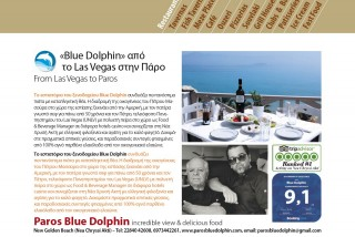 BLUE-DOLFIN-FINAL-(1)