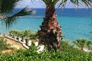 blue-dolphin-hotel-paros-24