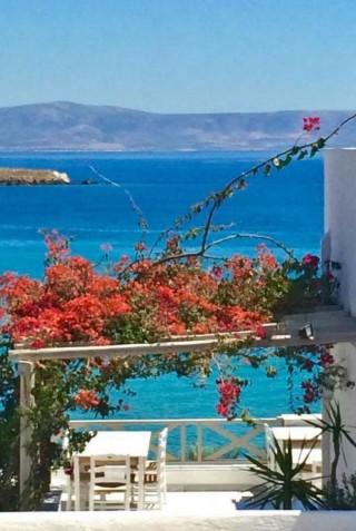 blue-dolphin-hotel-paros-34