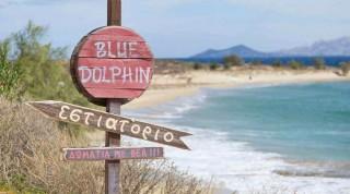 blue-dolphin-hotel-paros-54